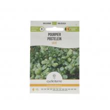 Pourpier Vert - 0,5 g