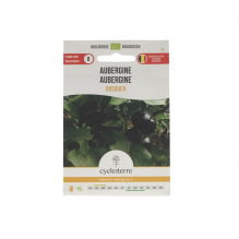 Aubergine Obsidien - 0,10 g
