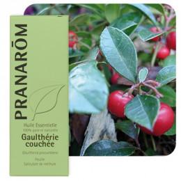 Huile essentielle de Gaulthérie couchée 10 ml