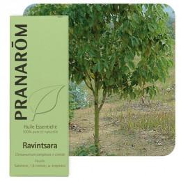 Huile essentielle de Ravintsara - 10 ml