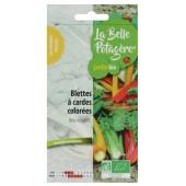 Blette à cardes colorées - Beta vulgaris L.