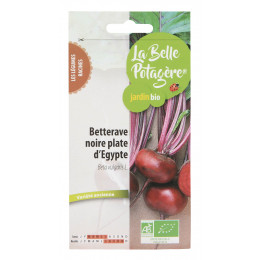 Betterave noire plate d'Egypte 2,5g - Beta vulgaris L.