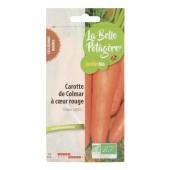 Carotte de Colmar à coeur rouge 1,5g - Daucus carota L.