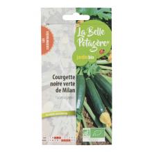 Courgette noire verte de Milan - Cucurbita pepo L - 1,6g