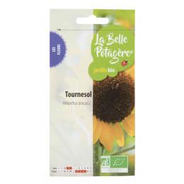 Tournesol - Helianthus annuus L. - 4.5g
