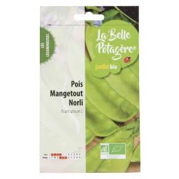 Pois Mangetout Norli 50g - Pisum sativum L.