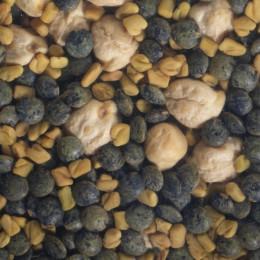 Graines à germer - Mix  protéines