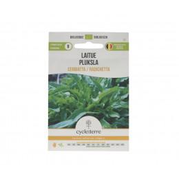 Laitue Cerbiatta / Radichetta - 0,50 g