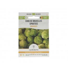 Chou de Bruxelles Groninger - 0,50 g