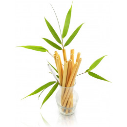 Pailles en bambou 22 cm - Lot de 12
