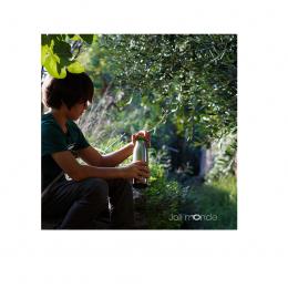Gourde isotherme en inox - La gloup - 750 ml