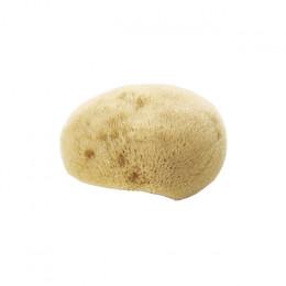 Natural face sponge - Biologisch afbreekbare spons